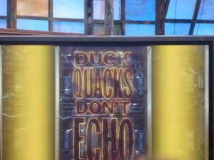 DuckQuacksLogo